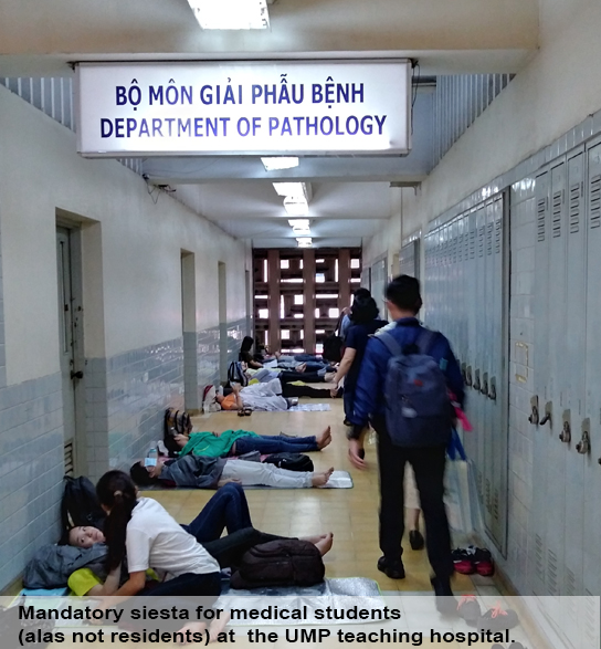 Department of Pathology & Laboratory Medicine, Magazine